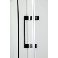 GELCO - DRAGON sprchové dveře 1200mm, čiré sklo GD4612