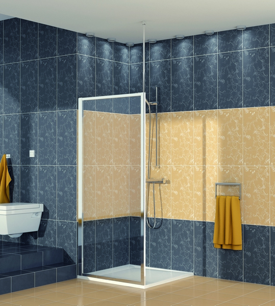 SanSwiss ECOF 0900 50 07 Boční stěna sprchová 90 cm ECOF09005007