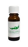 Esenciální vonný olej - Eukalyptus